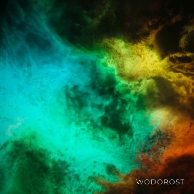 Wodorost — Wodorost (2021)