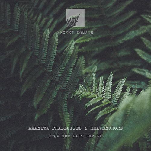 Amanita Phalloides & Heavenchord - From The Past Future (2021)